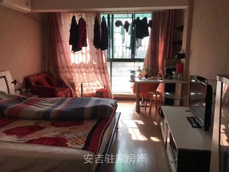 翠柳苑朝南,豪华装修单身公寓只要31万一口价。